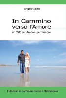 In cammino verso l'amore - Angelo Spina