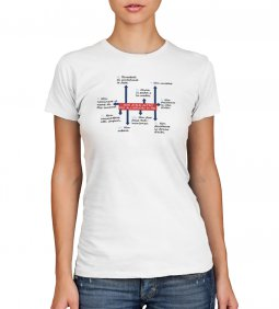Copertina di 'T-shirt 10 comandamenti - Taglia M - DONNA'