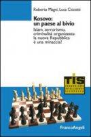 Kosovo: un paese al bivio. Islam, terrorismo, criminalità organizzata: la nuova Repubblica è una minaccia? - Magni Roberto, Ciccotti Luca