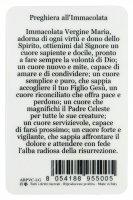 Immagine di 'Card Madonna Miracolosa in PVC - misura 5,5 x 8,5 cm - Italiano'