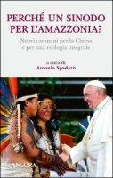 Perché un Sinodo per l'Amazzonia?
