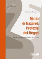 Maria di Nazaret, Profezia del Regno. Un approccio narrativo a Lc 1,34 - Carmelo Pellegrino