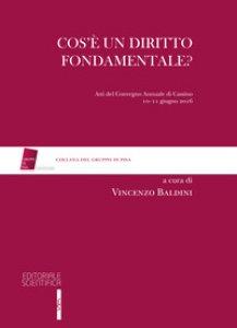 Copertina di 'Cos'è un diritto fondamentale? Atti del Convegno (Cassino, 10-11 giugno 2016)'