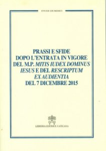 Copertina di 'Prassi e sfide dopo l'entrata in vigore del M.P. MITIS IUDEX DOMINUS IESUS'