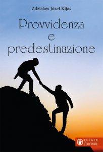 Copertina di 'Provvidenza e predestinazione'