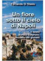 Un fiore sotto il cielo di Napoli - Fernando Di Stasio