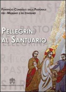 Copertina di 'Pellegrini al santuario'