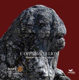 Copertina di 'L' «Oppidum» di Lioni. Itinerari tra storia e natura'