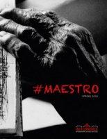 #maestro. Spring 2018 - Pisani Franco, Baldassarri Stefano U.