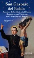 San Gaspare del Bufalo. Apostolo delle Missioni al Popolo e Fondatore dei Missionari del Preziosissimo Sangue - Massimiliano Taroni