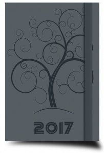 Copertina di 'Agenda settimanale piccola grigia 2017'