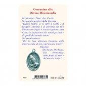 """Immagine di 'Card """"Gesù Misericordioso"""" con preghiera e medaglia - (10 pezzi)'"""