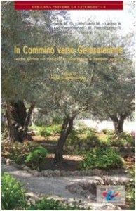 Copertina di 'In cammino verso Gerusalemme. Lectio divina sui vangeli di Quaresima e Pasqua. Anno B'