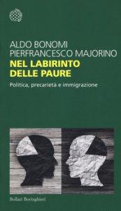 Copertina di 'Nel labirinto delle paure. Politica, precarietà e immigrazione'