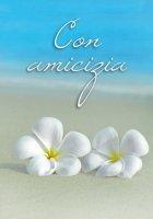 Con amicizia - SALA RENZO (CUR.)
