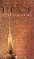 Peter Camenzind - Hesse Hermann