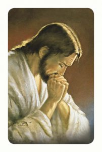 """Copertina di 'Card pvc con preghiera """"Cristo Orante""""'"""