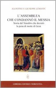 Copertina di 'L' assemblea che condannò il Messia. Storia del Sinedrio che decretò la pena di morte di Gesù'