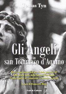 Copertina di 'Gli Angeli in San Tommaso d'Aquino'