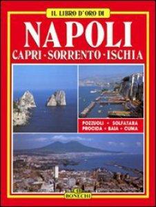 Copertina di 'Napoli. Capri. Sorrento. Ischia'