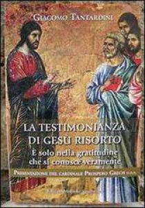 Copertina di 'La testimonianza di Gesù risorto'