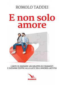 Copertina di 'E non solo amore'