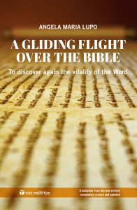 Copertina di 'A gliding flight over the Bible'