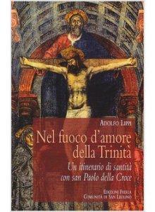Copertina di 'Nel fuoco d'amore della Trinità'