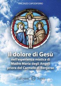 Copertina di 'Il dolore di Gesù nell'esperienza mistica di Madre Maria degli Angeli priora del Carmelo di Bergerac'