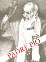 Padre Pio. Un martire - Preziuso Gennaro