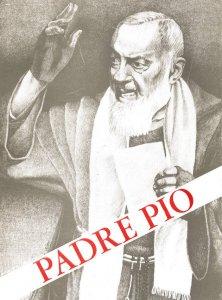 Copertina di 'Padre Pio. Un martire'