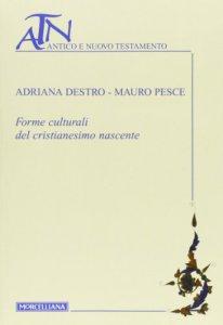 Copertina di 'Forme culturali del cristianesimo nascente'