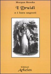 Copertina di 'I druidi e i loro segreti'