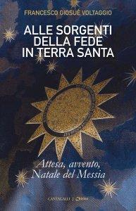 Copertina di 'Alle sorgenti della fede in Terrasanta. Volume 2'
