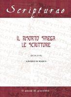 Il Risorto spiega le Scritture - Liborio Di Marco