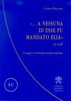 ...A nessuna di esse fu mandato Elia (LC 4,25) - Cosimo Pagliara