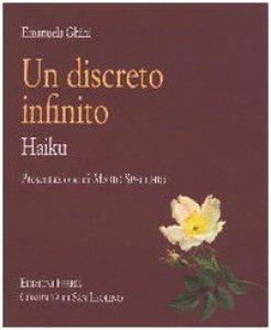Copertina di 'Un discreto infinito. Haiku'