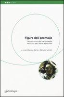 Figure dell'anomalia. La costruzione del personaggio nell'Italia dell'Otto e Novecento