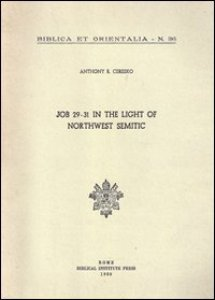Copertina di 'Job 29-31 in the light of northwest semitic. A translation and philological commentary'