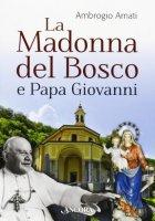 La Madonna del bosco e papa Giovanni - Ambrogio Amati