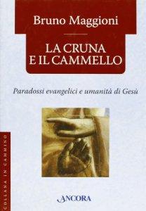 Copertina di 'La cruna e il cammello. Percorsi evangelici e umanità di Gesù'