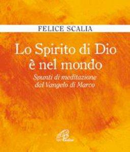 Copertina di 'Lo spirito di Dio è nel mondo'