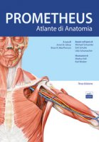 Prometheus. Altante di anatomia - Gilroy Anne M., MacPherson Brian R., Ross Lawrence M.