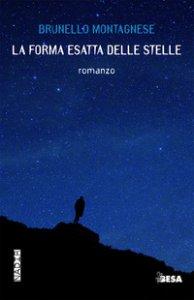 Copertina di 'La forma esatta delle stelle'