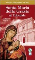 Santa Maria delle Grazie al Trionfale - Grieco Gianfranco