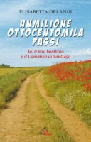 Unmilione ottocentomila passi - Elisabetta Orlandi