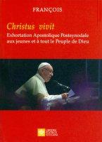 Les jeunes, la foi et  le discernement vocationnel - Francesco (Jorge Mario Bergoglio)