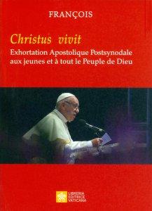 Copertina di 'Les jeunes, la foi et  le discernement vocationnel'