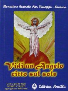 Copertina di 'Vidi un angelo ritto sul sole. Con la guida degli spiriti celesti ogni giorno dell'anno'