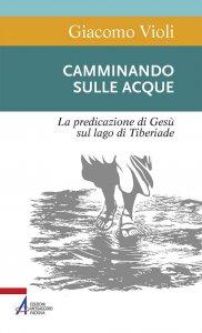 Copertina di 'Camminando sulle acque. La predicazione di Gesù sul lago di Tiberiade'